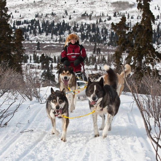 Dogsled_YTG_CathieArchbould2